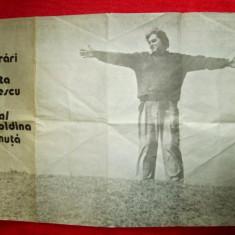 Afis de Teatru, 1987:Recital Leopoldina Balanuta, din Nichita Stanescu (44x61cm)