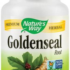 Goldenseal rott 50cps Secom