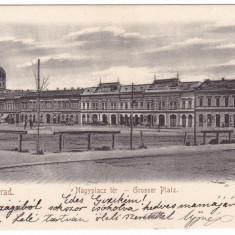 #1994- Romania, Nagyvarad, Oradea c.p. necirc. 1900: Piata Centrala, animat - Carte Postala Crisana pana la 1904, Necirculata, Fotografie
