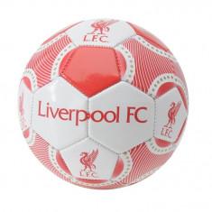 Oferta! Minge Team Liverpool - marimea 1 - Minge handbal