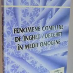 FENOMENE COMPLEXE DE INGHET / DEZGHET IN MEDII OMOGENE de DIANA ENESCU , 2005