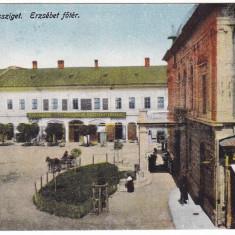 #2010- Romania, Maramures, M.Sziget c.p. circ. 1917: Piata Elisabeta, animat - Carte Postala Maramures 1904-1918, Circulata, Fotografie, Sighetu Marmatiei