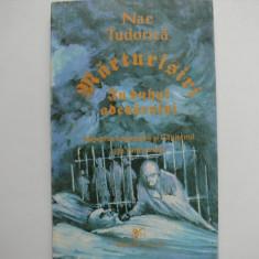 Marturisiri - Nae Tudorica (carte legionara) - Istorie