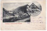 #2006- Romania, Maramures, Radna- Borberek, Valea Vinului  c.p. circulata 1908, Fotografie, Borsa