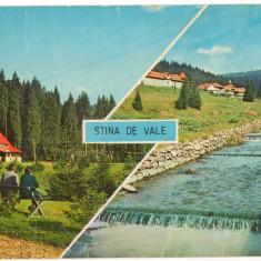 CPI (B8452) CARTE POSTALA - STANA DE VALE, MOZAIC - Carte Postala Transilvania dupa 1918, Circulata, Fotografie