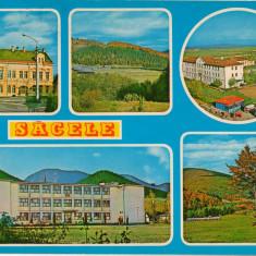 CPI (B8449) CARTE POSTALA - SACELE, MOZAIC - Carte Postala Transilvania dupa 1918, Circulata, Fotografie