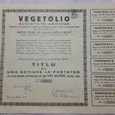 ACTIUNI - VEGETOLIO - 1939 - TITLU DE ACTIUNE LA PURTATOR CU VAL. NOM. 10000 LEI
