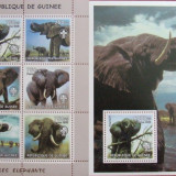 R. GUINEEA - ELEFANTI, 2002, 1 M/SH + 1 S/SH, NEOBLIT., - RG 5, Fauna