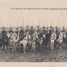 MILITARA  UN REGIMENT DE SPAHIS SALUTA CU SABIA DRAPELUL CARE TRECE  CIRC. 1917, Circulata, Printata