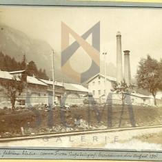 CARTE POSTALA, BUSTENI, FABRICA DE HARTIE, 1901
