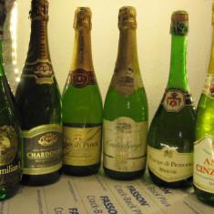 6 sticle RARE, VECHI , SAMPANIE  DE COLECTIE (lot E)