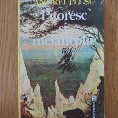 ANDREI PLESU- PITORESC SI MELANCOLIE - Studiu literar