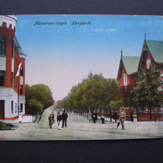 Sighetul Marmatiei - Strada Lonyai. 1917, animata - Carte Postala Maramures 1904-1918, Necirculata, Printata