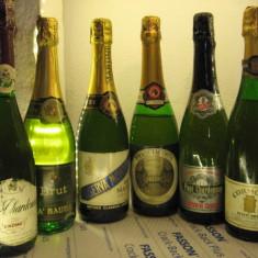 6 sticle RARE, VECHI , SAMPANIE  DE COLECTIE (lot L)
