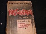 NEGHINITA- STEFAN RODEANU-PREFATA TUDOR TEODORESCU BRANISTE-40 EXEMPL-, Alta editura
