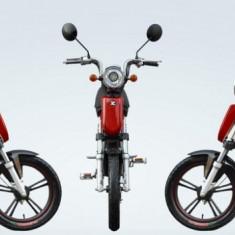 Bicicleta electrica Quicky 1.0 48V 12Ah Autonomie 40Km RosuPB Cod:E00019-1 - Mountain Bike