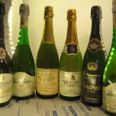 6 sticle RARE, VECHI , SAMPANIE  DE COLECTIE (lot O)