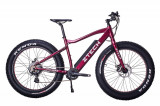 Bicicleta electrica Fatbike Lithium 36V 10,4Ah Autonomie 60Km RosuPB Cod:E00087-1