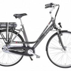 Bicicleta Electrica Letizia Li-Ion Samsung 36V 9Ah Autonomie 45Km GreyPB Cod:E00080-3 - Mountain Bike