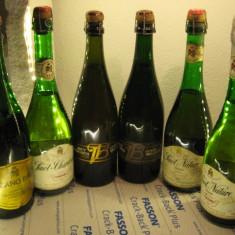 6 sticle RARE, VECHI , SAMPANIE  DE COLECTIE (lot M)