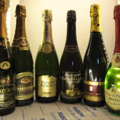 6 sticle RARE, VECHI, SAMPANIE DE COLECTIE (lot G) CADOU DEOSEBIT PT SF.MARIA