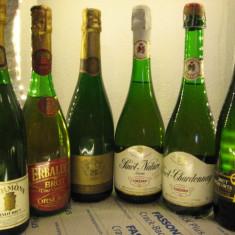 6 sticle RARE, VECHI, SAMPANIE DE COLECTIE (lot C)