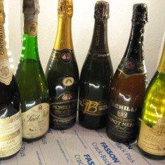 6 sticle RARE, VECHI , SAMPANIE  DE COLECTIE (lot B)
