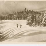 PRAHOVA -PREDEAL - DRUM SPRE CABANA 3 BRAZI RPR 1958 - Carte Postala Muntenia dupa 1918, Circulata, Fotografie