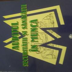 Carte, Auditul Securitatii si Sanatatii in munca, 312pagini, - Curs Economie
