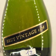 N. 12 -rare vechi sampanie brut vintage 1978, segura viudas, 75 cl 11, 9 vol