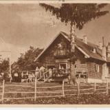 PRAHOVA -PREDEAL - CABANA 3 BRAZI RPR 1952, SUPRATIPAR - Carte Postala Muntenia dupa 1918, Circulata, Fotografie
