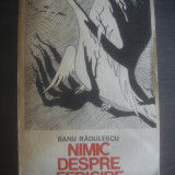 BANU RADULESCU - NIMIC DESPRE FERICIRE - Roman