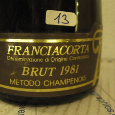 N. 13 -rare sampanie brut 1981, sboccatura 1984, gran couvèe , 75 cl 12 vol