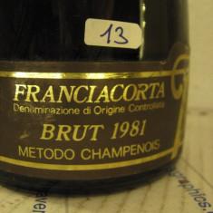 N. 13 -rare sampanie brut 1981, sboccatura 1984, gran couvèe, 75 cl 12 vol