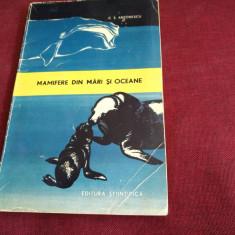 C S ANTONESCU - MAMIFERE DIN MARI SI OCEANE - Carte Zoologie