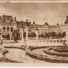 BIHOR, ORADEA- VEDERE RPR 1960 - Carte Postala Crisana dupa 1918, Circulata, Fotografie