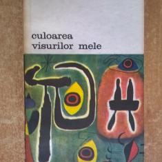 Joan Miro - Culoarea visurilor mele