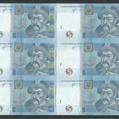 UCRAINA 5 HRIVNE 2013 UNC 6 Buc COALA NETAIATA ( UNCUT ) Semn IHOR SORKIN - bancnota europa