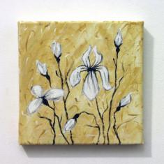 Tablou pictat in culori acrilice pe panza, 20x20 cm - Pictor roman, Flori, Altul
