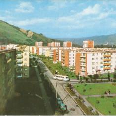 HUNEDOARA - PETRILA VEDERE - Carte Postala Transilvania dupa 1918, Necirculata, Printata