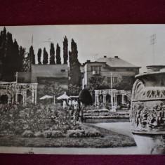 Aug17 - Timisoara - Carte Postala Banat dupa 1918, Circulata, Printata