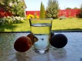 Tuica, diferite sortimente (prune ,mere, caise si pere, tescovina)