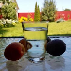 Tuica, diferite sortimente (prune, mere, caise si pere, tescovina)