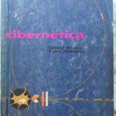 Cibernetica - Edmond Nicolau, Const. Balaceanu, 400049