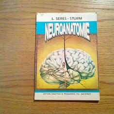 NEUROANATOMIE - L. Seres-Sturm - 1995, 162 p. - Carte Neurologie