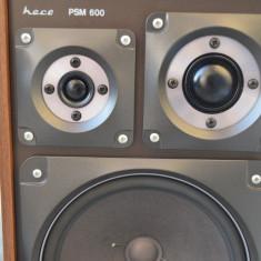 Boxe Heco PSM 600