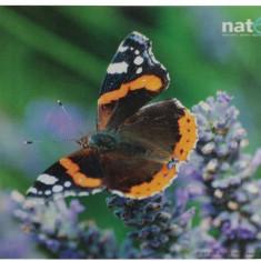 Mousepad Natec NPF-0383 Clasic Fluture