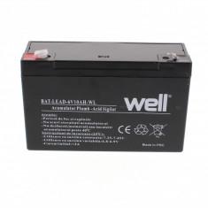 WELL Acumulator plumb acid 6V 10AH, Well - UPS