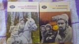 Pan wolodyjowski (vol I-II)-H.Sienkiewicz, Alta editura