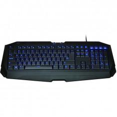 Tastatura Gigabyte FORCE K7, USB Gaming, iluminata - RESIGILAT